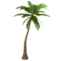 Palm Sticker logo