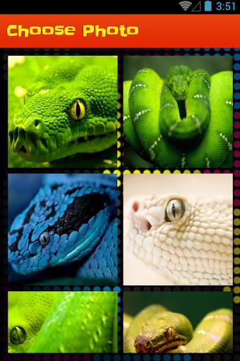 Snake Slide Puzzle Game