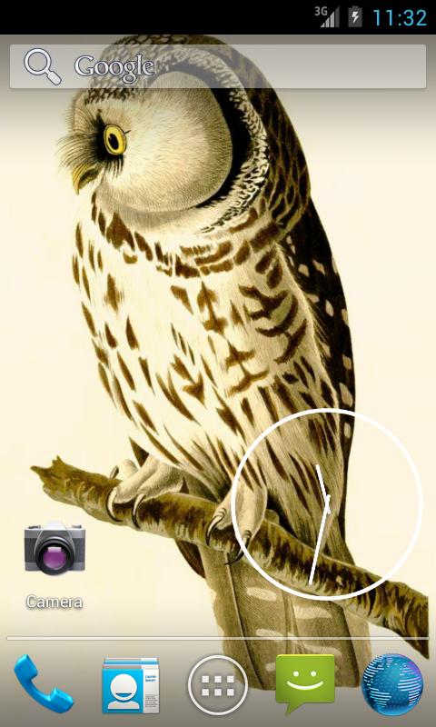 Audubon's OWLS HD+ Wallpaper- screenshot