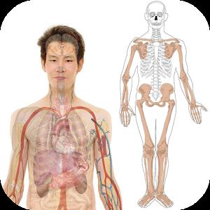 解剖阿特拉斯免費。 教育 App LOGO-硬是要APP