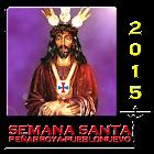 Semana Santa Pya-Pvo 2015 icon
