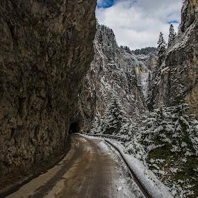 Winter Road by Mihail Marzyanov - Landscapes Travel