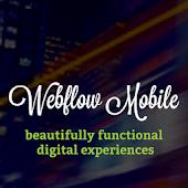 Webflow Design