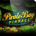 Pirate Bay Pinball icon