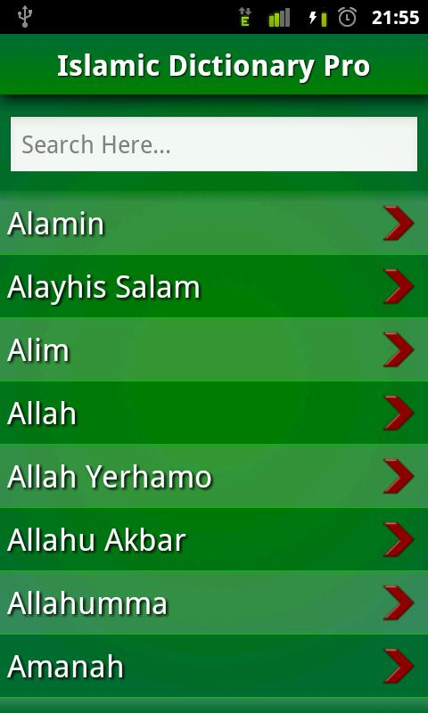 Islamic Dictionary Pro: FREE!! - screenshot