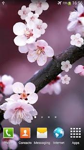 櫻花動態桌布