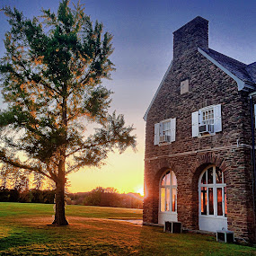 Gingko Tree and Hayfield House by Aaron Campbell - Instagram & Mobile iPhone ( building, penn state wilkes-barre, backlit, tree, hdr, gingko, architecture, sunlight, campus )
