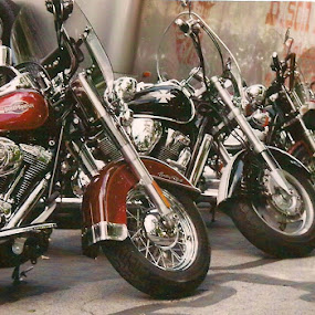 Waiting To Ride by Tina French - Transportation Motorcycles (  )