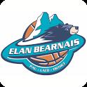 Elan Béarnais icon