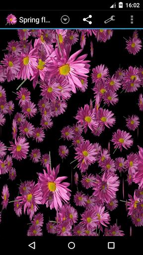 春天的花朵风暴3D壁纸