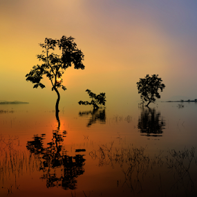 by Subir Majumdar - Landscapes Waterscapes