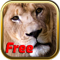 Free Africa Animal Puzzle Game
