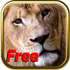 Free Africa Animal Puzzle Game icon
