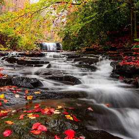 What's in a name? by Jim Harmer - Landscapes Waterscapes ( landscape,  )
