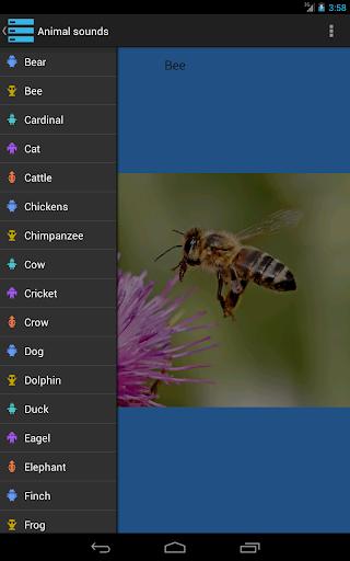 【免費教育App】Animal sound guess game-APP點子