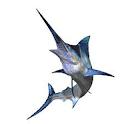 Saltwater Fishing icon