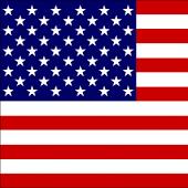 US Capitals Game!