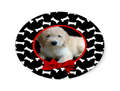 Photo Frames for Pets - Apps on Google Play