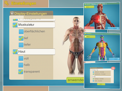 Easy Anatomy 3D(learn anatomy) – Apps bei Google Play