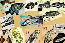 魚拓カメラ ~釣り革命~のおすすめ画像2