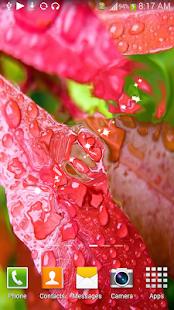 S6 Rain Drop HD LiveWallpaper screenshot
