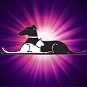 SBAH icon