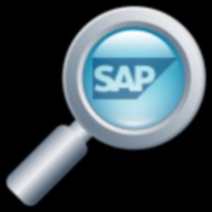 ¿Cómo empezar o iniciarme en SAP ?
