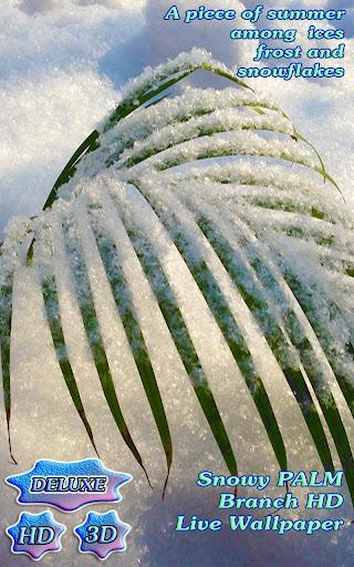 Snowy Tender Winter Palm HD
