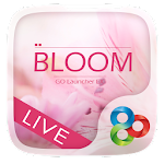 Bloom GO Launcher Live Theme v1.0