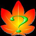 Kaede IME V3 Helpfile logo