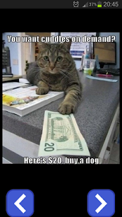 Funny Animals Images - screenshot thumbnail