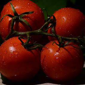 by Sathyanarayanan Shanmugam - Food & Drink Fruits & Vegetables (  )