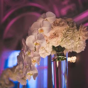 Floral Fondness by Andrew Ng - Flowers Flower Arangements ( floral design, wedding flowers, floral arrangement, centerpieces, flowers )