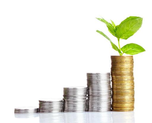 Investing For Beginner