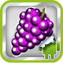 DVR:Bumper – Grape logo