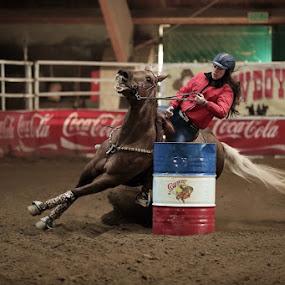 barrel racing by Alessandra Cassola - Sports & Fitness Rodeo/Bull Riding ( #barrel racing, #horses, #horse )