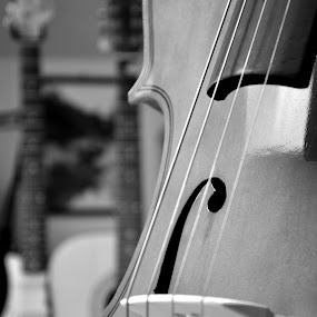 Cello by Andrea Magnani - Black & White Objects & Still Life ( music, andrea magnani, instrument, cello )