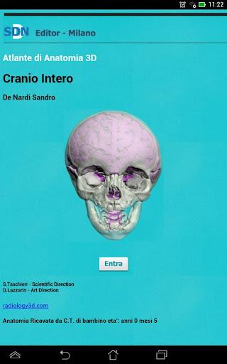 Cranio Intero