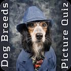 Dog Breed Picture Quiz icon