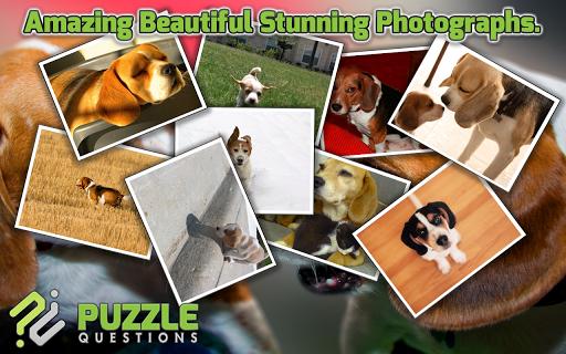 【免費解謎App】Free Beagle Puzzle Games-APP點子