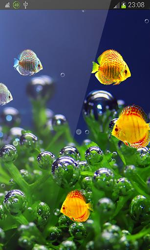 Tiny Fish Free Aquarium hd LWP