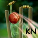 Cricket Launcher logo