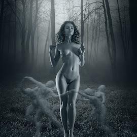 by Dmitry Laudin - Digital Art People ( forest )