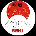 Shotokan Katas básicos icon