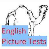English Picture Test