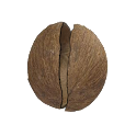 Coconut Simulator icon