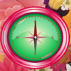 Flower Compass icon