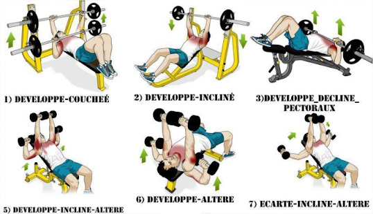 About Chest workouts