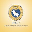 PWC ECU icon