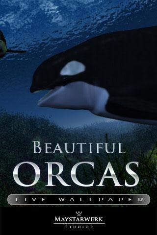 Orca Whale  live wallpaper - screenshot